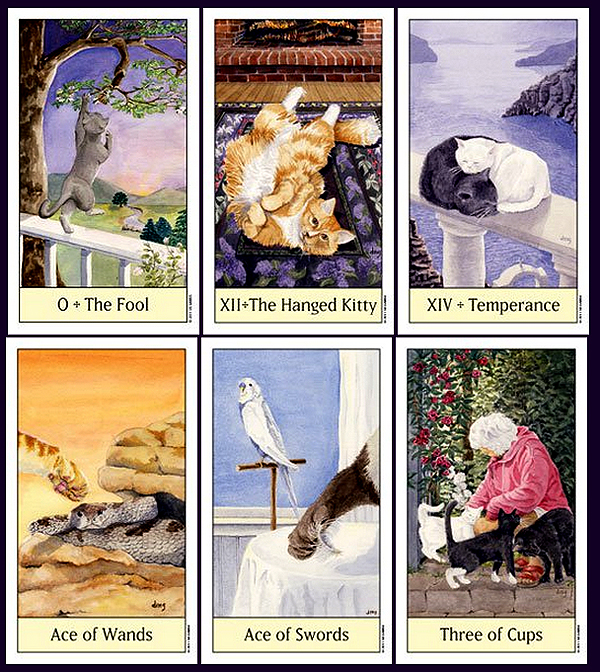 Cats Eye Tarot 2