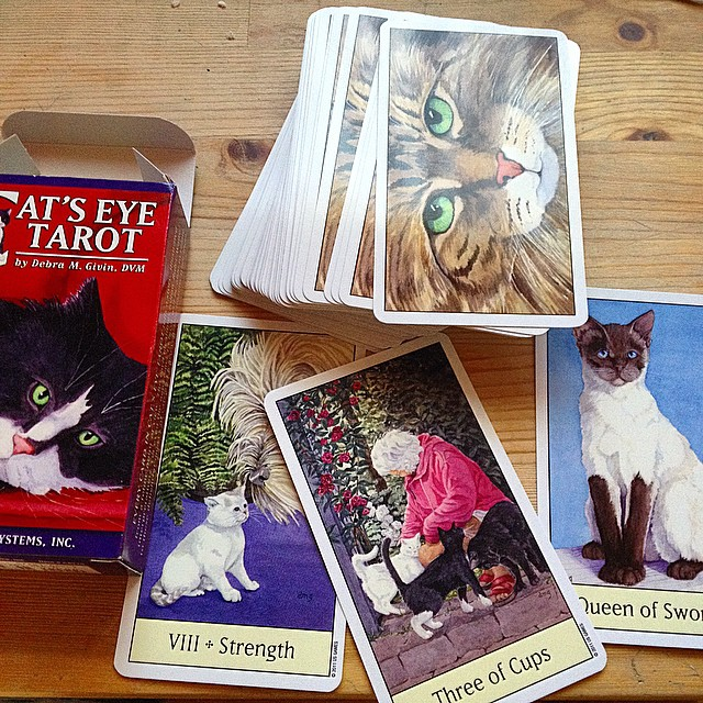 Cats Eye Tarot 3