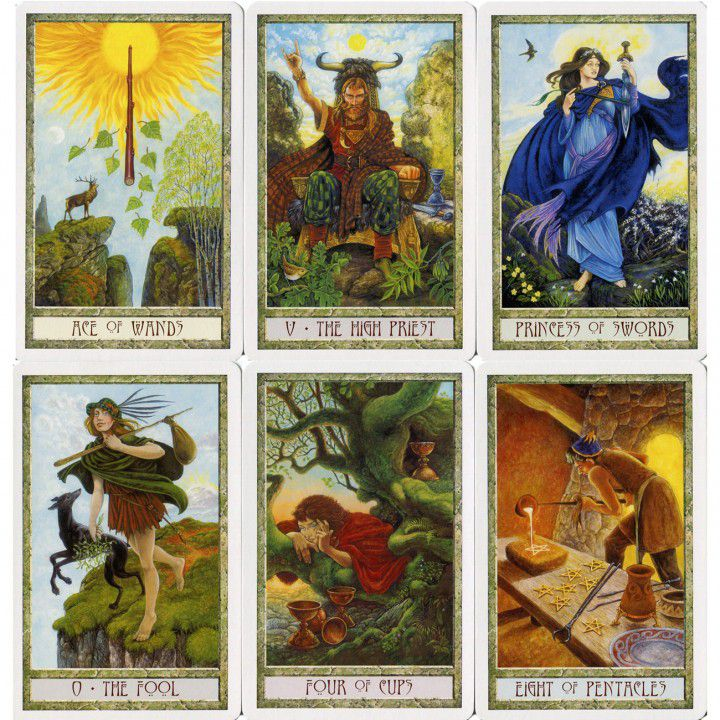 The Druid Craft Tarot Kit 4