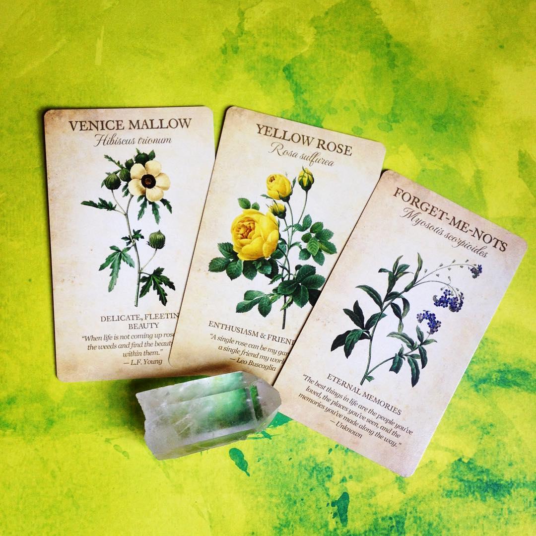 Botanical Inspirations Deck Book Set 3