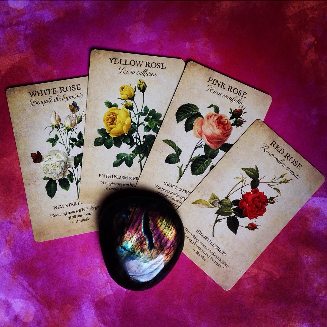 Botanical Inspirations Deck Book Set 4