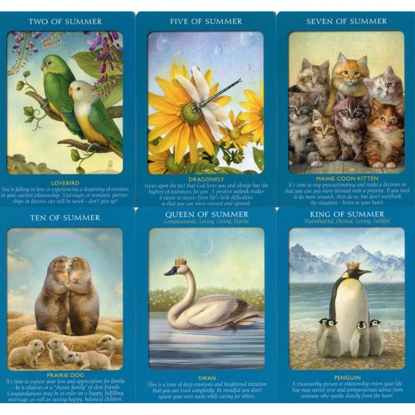 Animal Tarot Cards 3