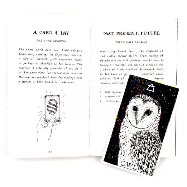 Animal Spirit Deck and Guidebook 8