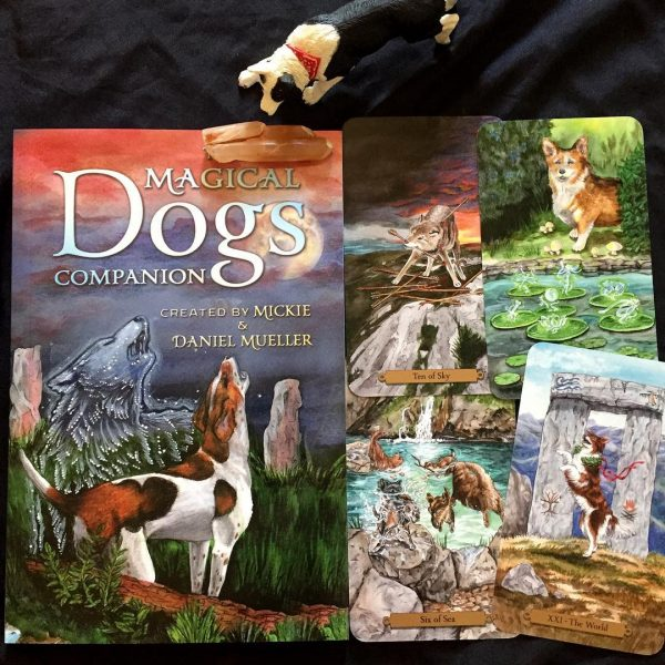 Magical Dogs Tarot 4