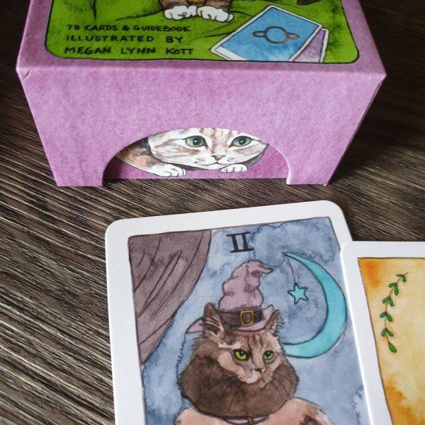 Cat Tarot 6